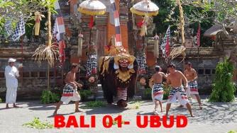 BOTON BALI 1