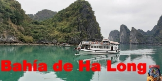 BOTON VIDEO HALONG